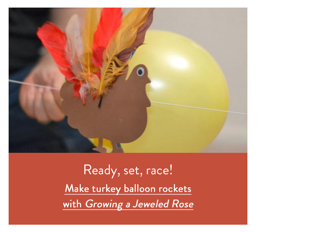 Make turkey balloon rockets with Growing a Jeweled Rose