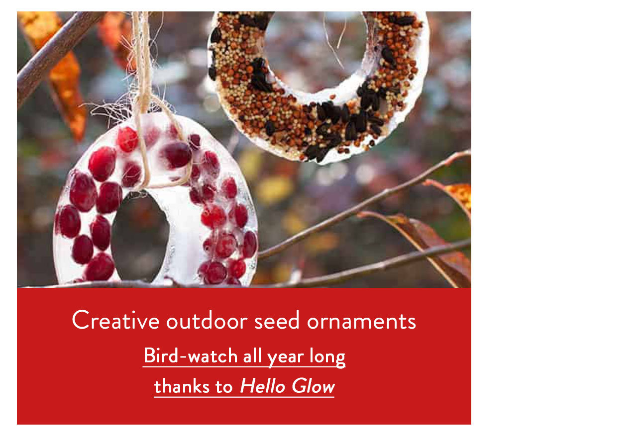 Creative outdoor seed ornaments