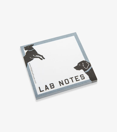 Lab Notes Sticky Notes